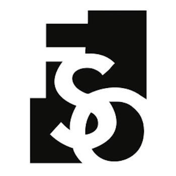 Small fso logo