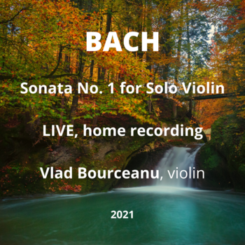 Small bach live at home